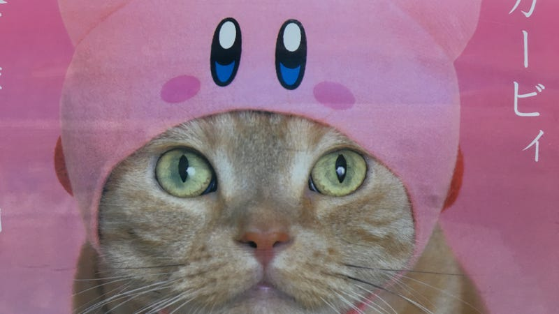 Illustration for article titled Kirby Hats Kirbify Your Cats