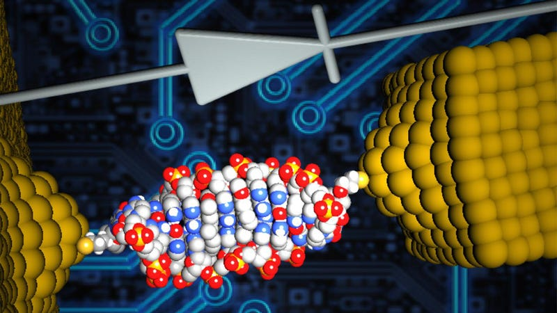 The World's Smallest Diode Is Made of DNA