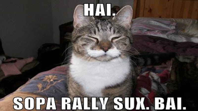 Illustration for article titled LolCat Kingpin May Pull 1,000+ Domains from GoDaddy in SOPA Protest