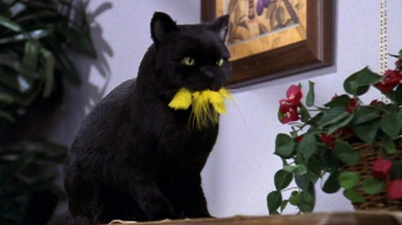 Salem is one of the greats.