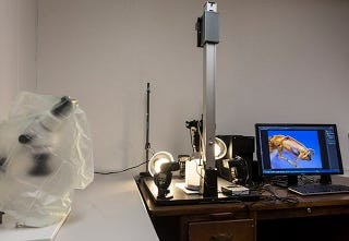 Illustration for article titled How To: Build A World-Class Insect-Photography Rig For Under $6,000