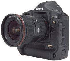 Illustration for article titled Canon Readying 22-Megapixel EOS-1Ds Mark III?