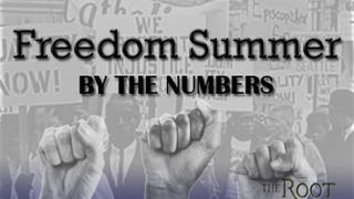Illustration for article titled The Impact of Freedom Summer by the Numbers