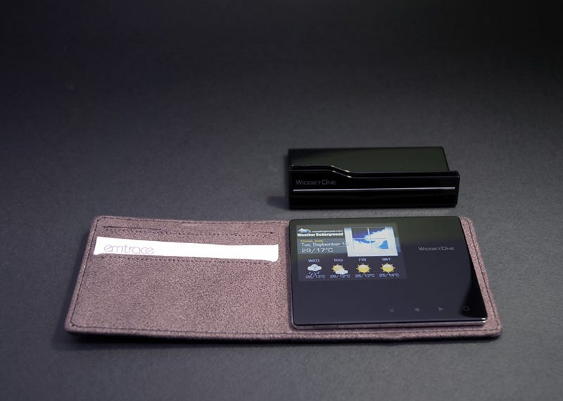 Illustration for article titled EmTrace's PS100 Photoskin Frames Fit In Your Wallet