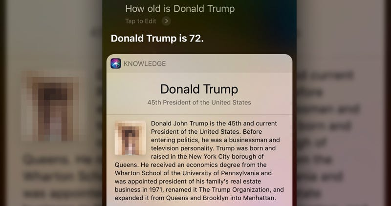 Illustration for article titled Siri Pulls Up Image of an Actual Dick When Asked About Trump