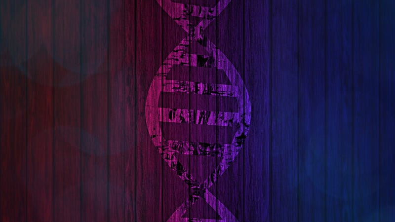 Illustration for article titled Your Genetic Testing Results Can Change—Here's Why