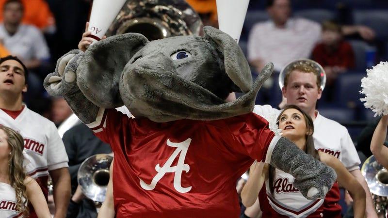 Photo Credit: Wade Payne/AP