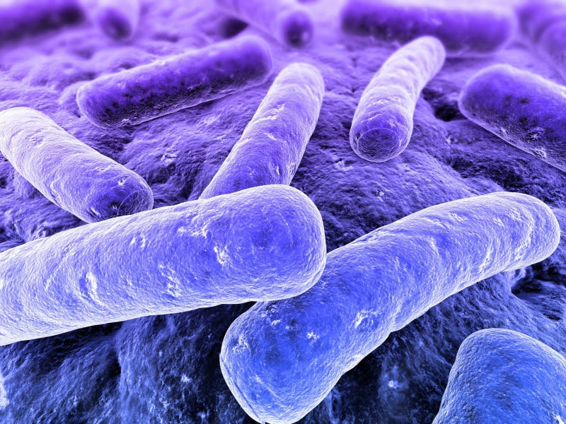 Illustration for article titled A new antibiotic that can defeat anthrax and MRSA