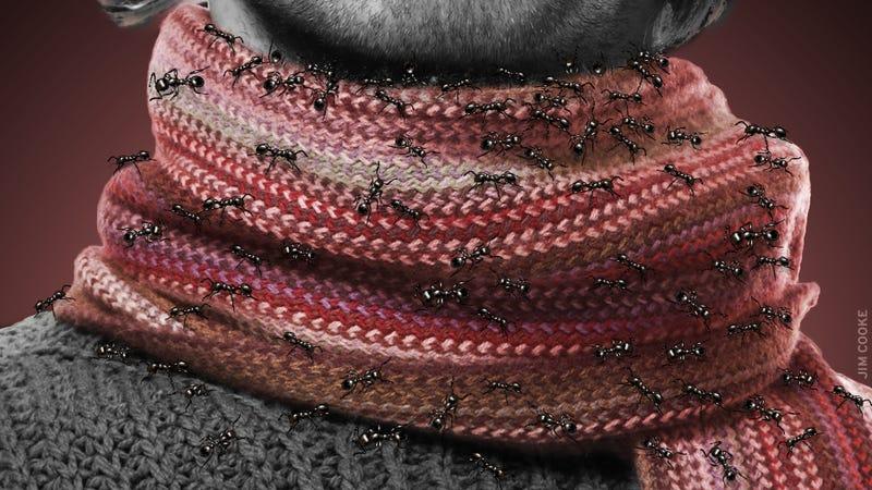 Illustration for article titled Scarves Are Bullshit