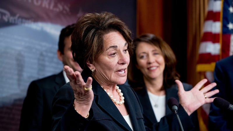 Rep. Anna Eshoo, D-Calif., speaks at a news conference on Capitol Hill in Washington, Wednesday, May 16, 2018