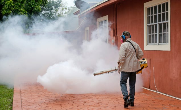 A mosquito control worker spraying a home in Wynwood on August 1st. Image:AP