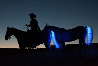 Illustration for article titled LED Tail Lights