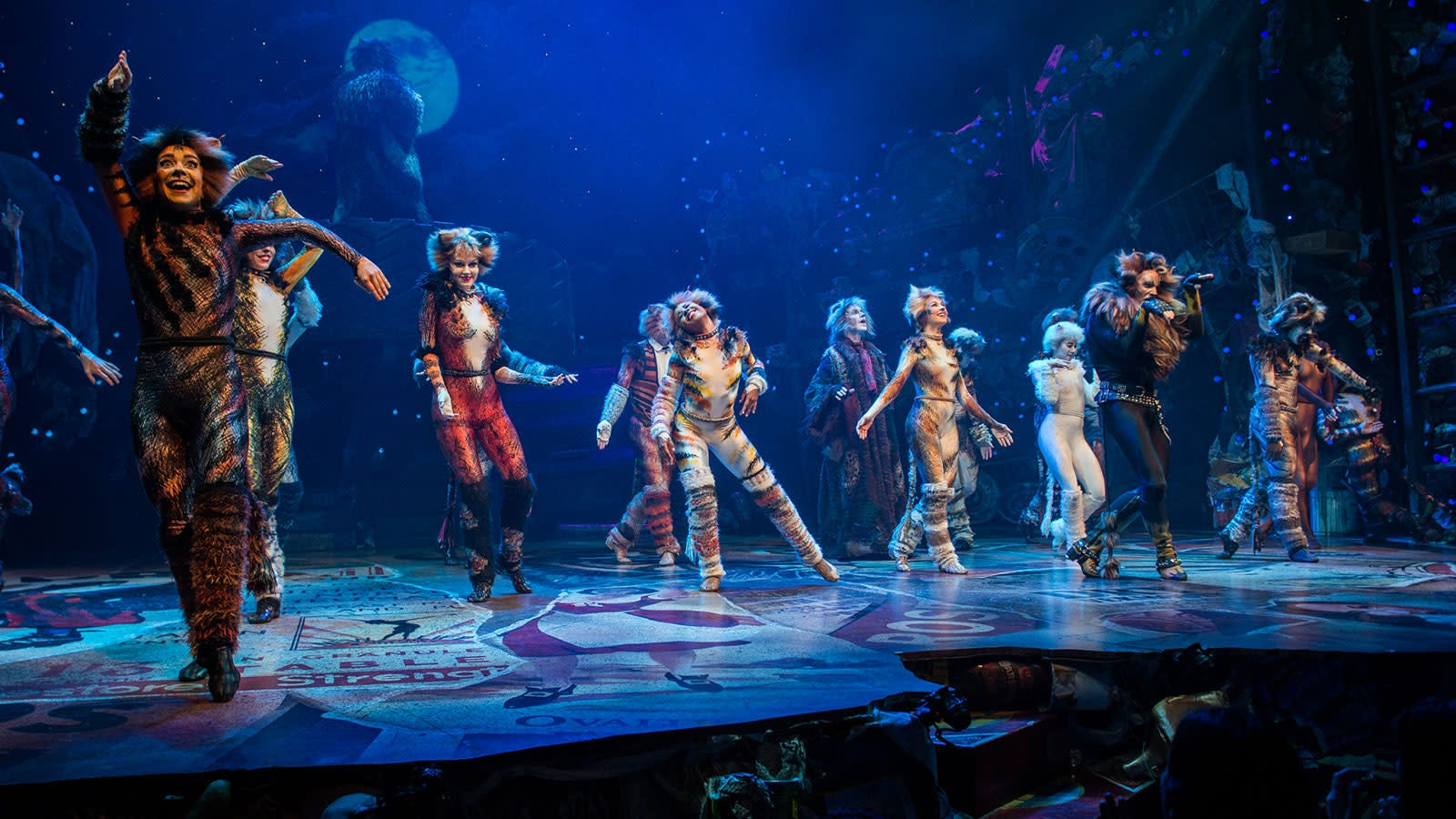 Cats Musical Cast Interviews On Pride And Embarrassment