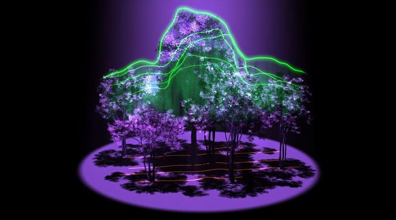 Illustration for article titled La NASA estudiará los bosques en 3D mediante un nuevo láser espacial