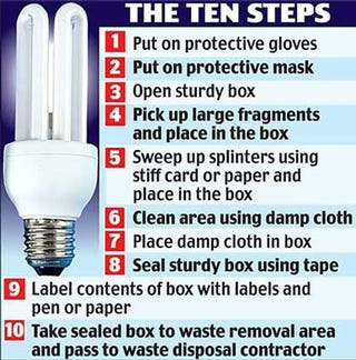 Illustration for article titled The 10 Steps to Dealing With a Broken Light Bulb According to the UK Government