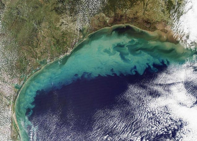 The Gulf of Mexico 'dead zone'. Source: NASA
