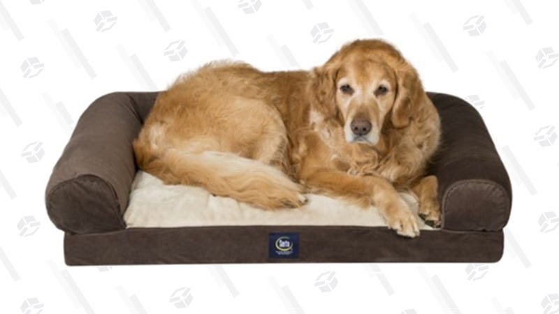 Serta Extra Large Memory Foam Pet Couch | $50 | Woot