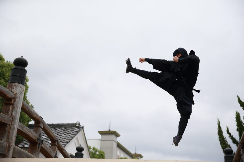 Illustration for article titled 6 Jobs I Might Have to Look Into Now That I Know You Can Get a W-4 for Being a Real Ninja