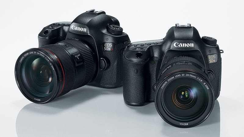 Illustration for article titled Canon 5DS and 5DS R: The Highest Resolution Full-Frame DSLRs Ever Made