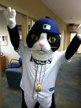 Illustration for article titled The Rays Now Lead The AL East In Mascots