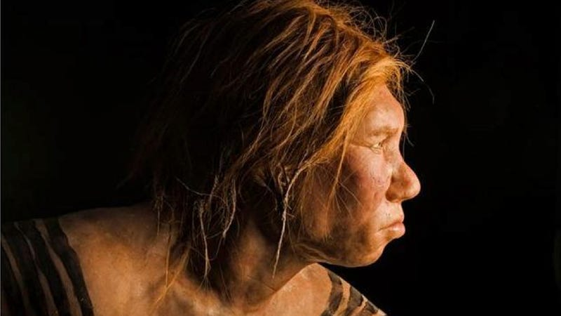 Illustration for article titled New DNA evidence could explain what happened to the Neanderthals