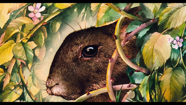 This Fan Trailer is a Beautiful Ode to the Haunted Beauty ofWatership Down
