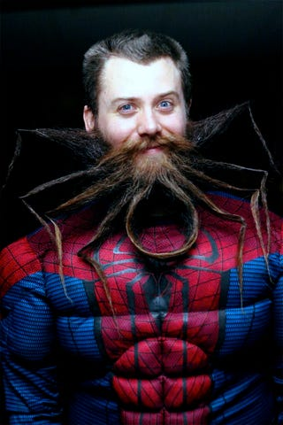 Illustration for article titled Spiderbeard, Spiderbeard