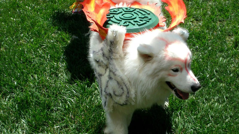 Illustration for article titled Meet a Dog That's Blissfully Unaware He's Cosplaying Amaterasu