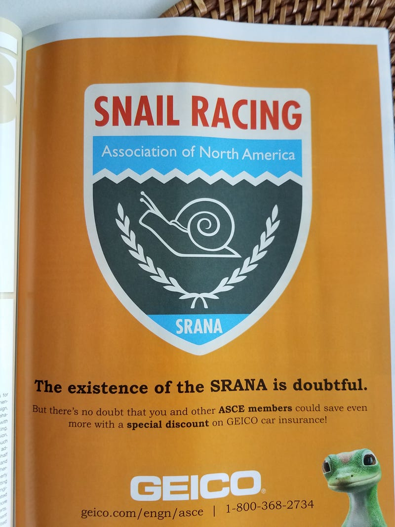 Illustration for article titled Snail racing league
