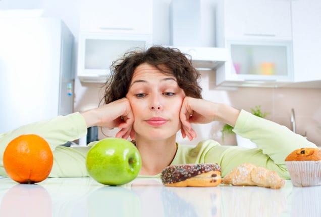 Essay on i hate junk food?