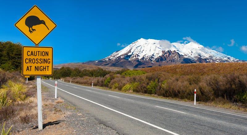 Illustration for article titled El volcán neozelandés bajo el que reposan miles de millones en oro y plata