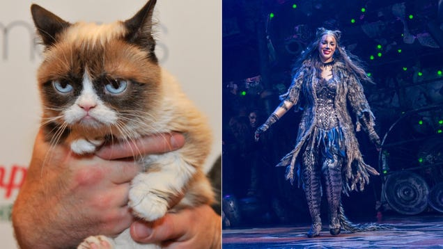 Grumpy Cat to Overshadow Leona Lewis in Cats on Broadway