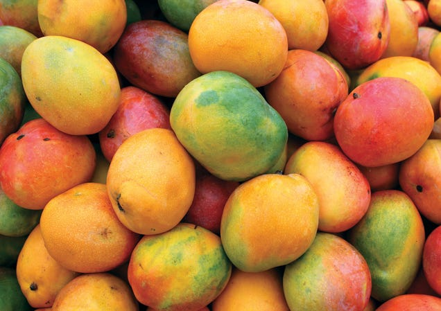 Illustration for article titled Mangoes are available year round. Let's do some mango things.