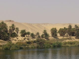 Illustration for article titled Arid Egyptian desert was once home to mega-lake teeming with life
