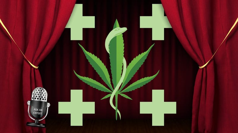 Illustration for article titled Ask an Expert: All About Medical Marijuana