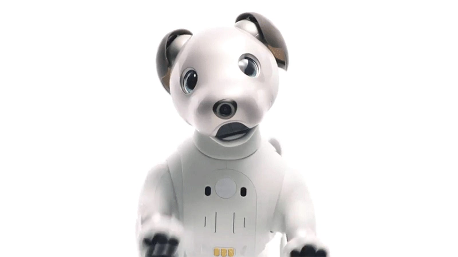 Sony's Robotic Dog Aibo Is Back From the Dead