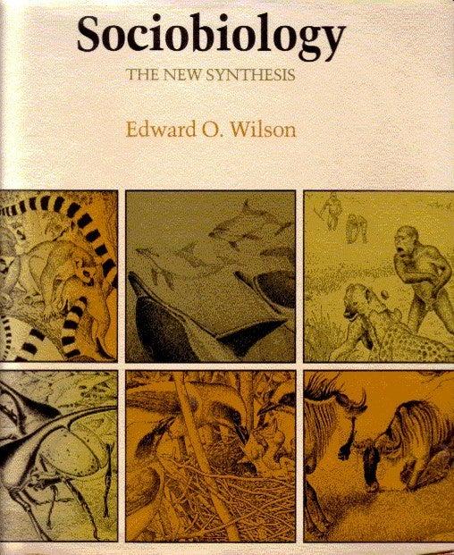 The Future of Life Critical Essays