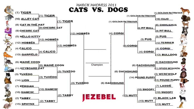 Illustration for article titled Cats vs. Dogs: Here Are Your Ferocious Final Four!