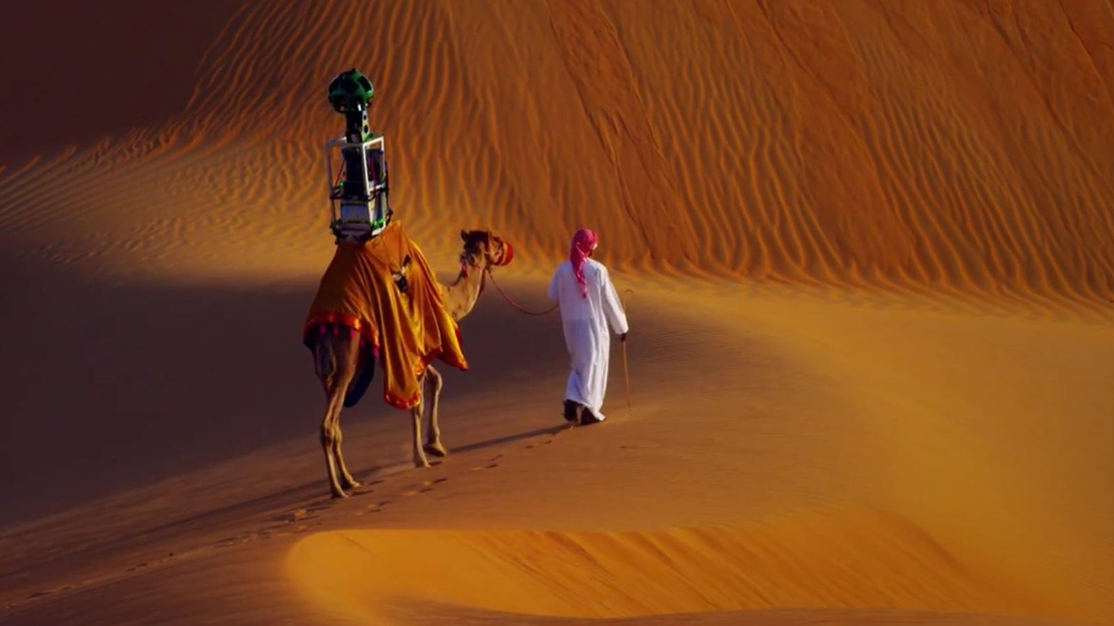Google Strapped a Camera To a Camel To Put The Desert on