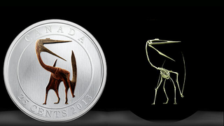 Illustration for article titled New Canadian coin features the incredibly badass Quetzalcoatlus — and it glows in the dark