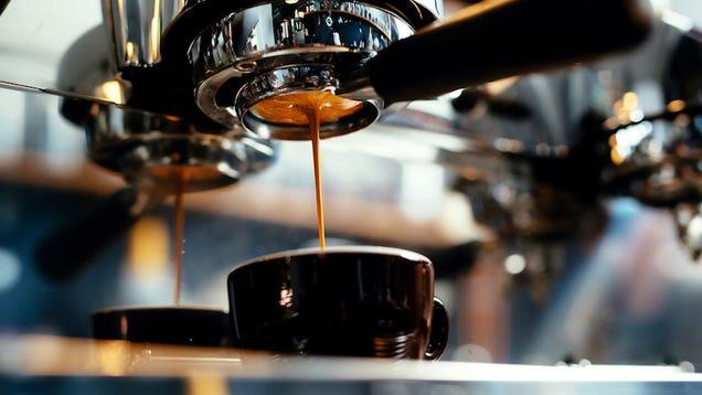 The Global Coffee Shortage Is Already a Huge Headache