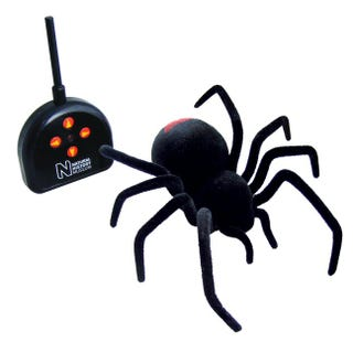 Illustration for article titled Remote Controlled Black Widow Spider Probably Won't Last Very Long