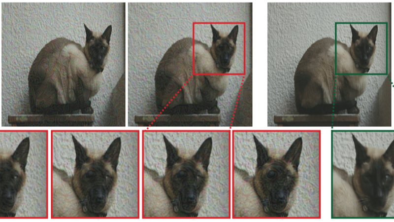 The new algorithm at work, turning a cat into something an AI—and humans—will perceive as a dog.