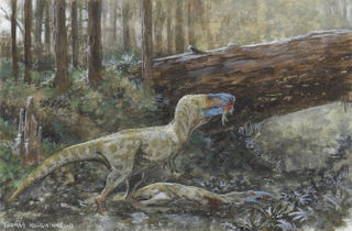 Illustration for article titled Scarred Skull Confirms Combat And Cannibalism Among Tyrannosaurs