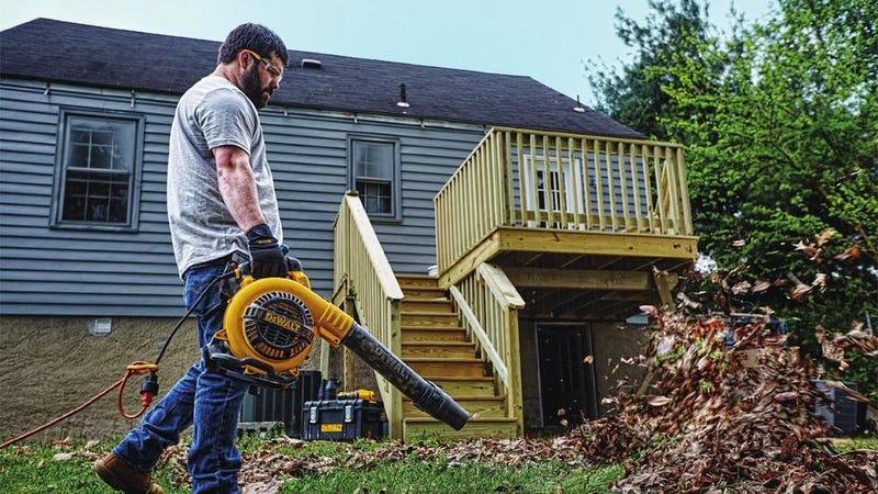 Rebajas de DEWALT para el jardín | Home DepotFoto: Home Depot