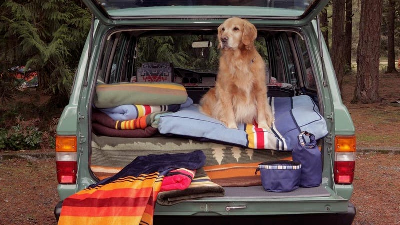 Illustration for article titled Take 15% Off Your Favorite Camp Blankets Starting At $43