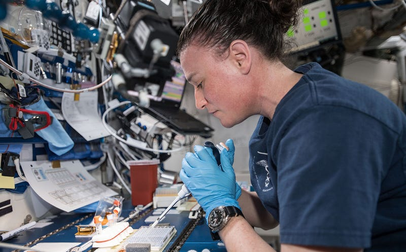 La astronauta Serena-Auñón-Chancelor, trabajando a bordo de la ISS