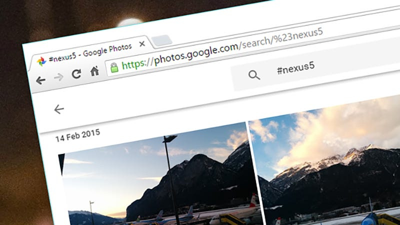 Illustration for article titled Search Hashtags in Google Photos To Find Pics Faster