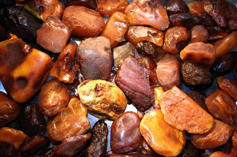 Trozos de ambar sin pulir. El fósforo blanco tiene el mismo aspecto. Foto: Wikipedia