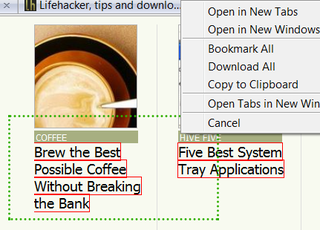 Illustration for article titled Snap Links Plus Brings Multi-Link Selection to Firefox 3